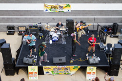 Rising Pint Brewfest Bands