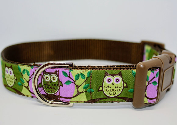 Purple and Green Owls On Brown