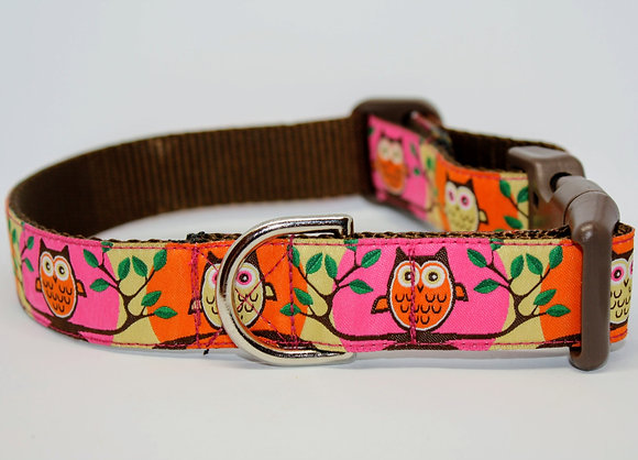 Pink and Orange Owls On Brown