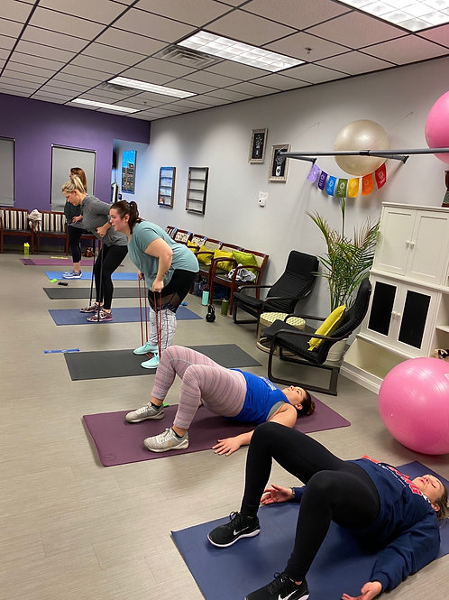 Pregnant & Postpartum Fitness Workshop