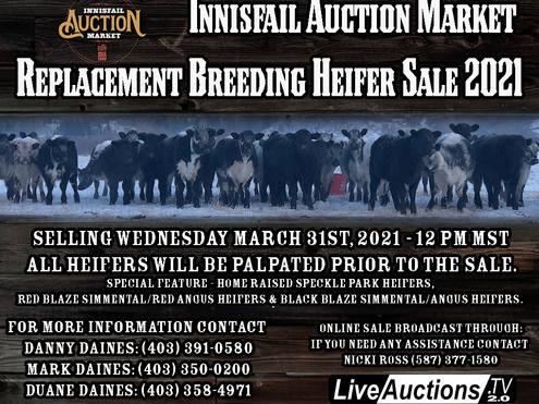 Innisfail Auction Market 2021 Replacment