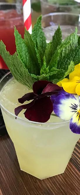 All Day-Cocktail-Bar-Skopelos