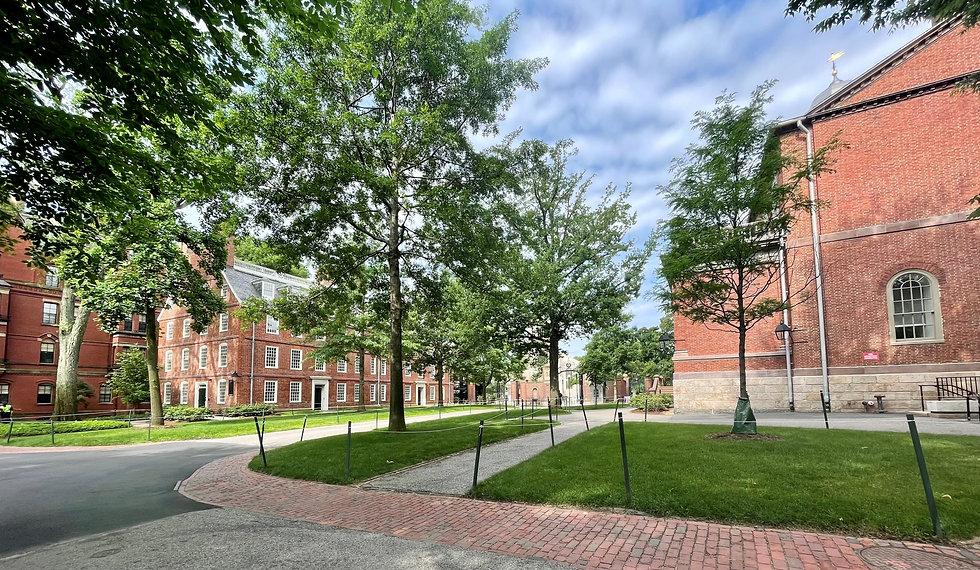 Harvard3.jpg