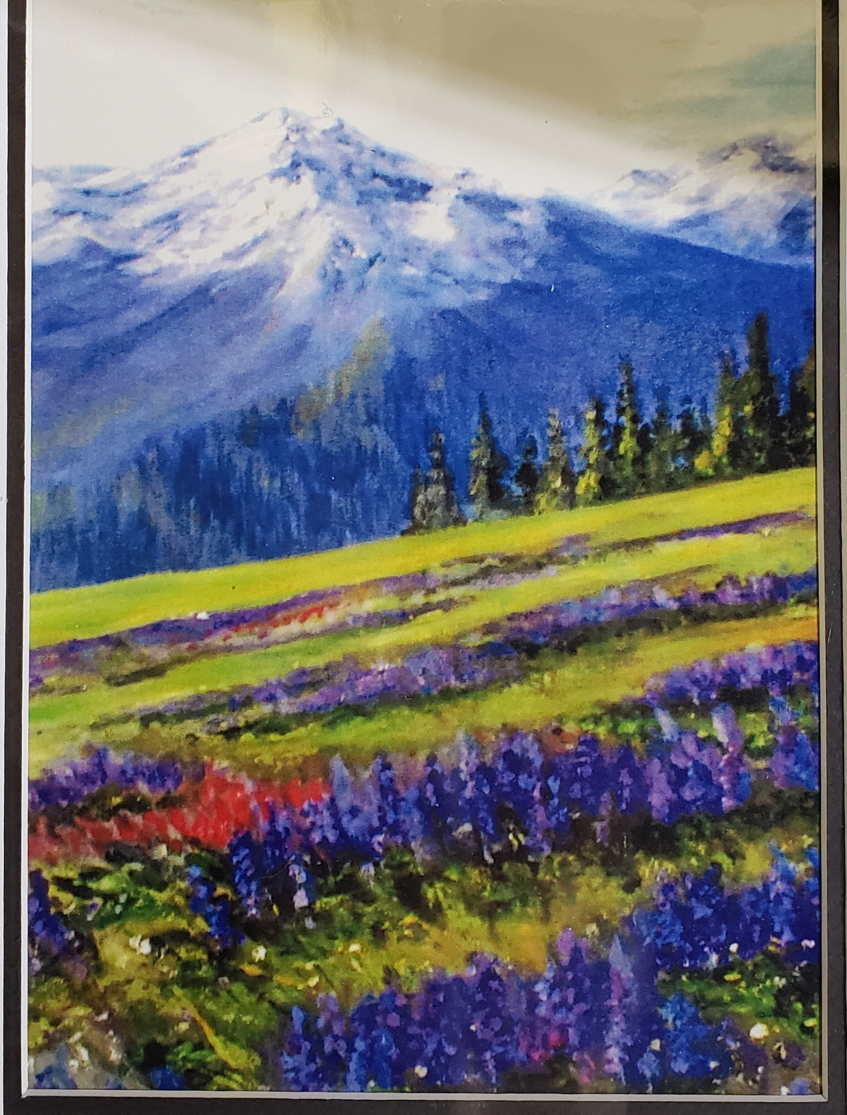 Hurricane Ridge ~ Print