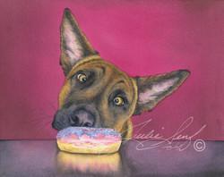 Doughnut Hound