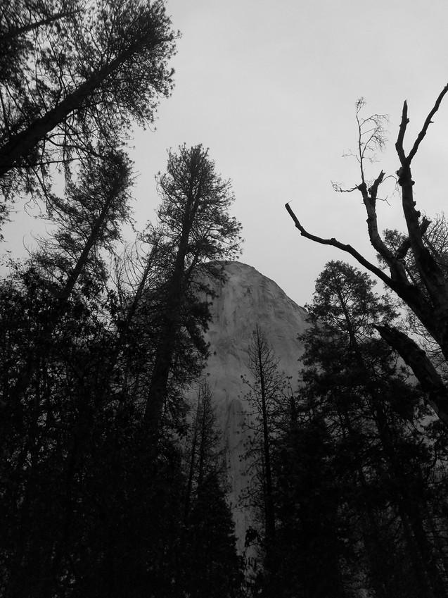 El Cap Black and White