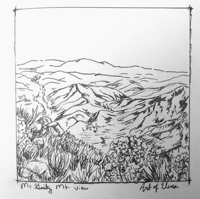 DAY 16: Local Landscape