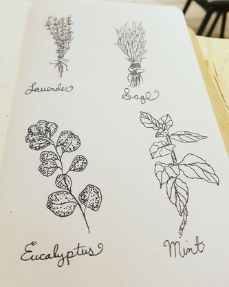 DAY 24: Herbs