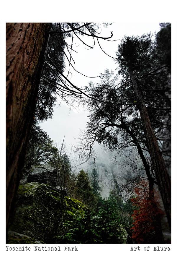 Gentle Winter Yosemite