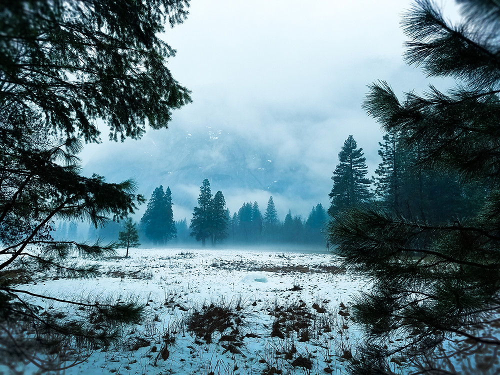 Photography by Elura, blue hue, winter forest of Yosemite Valley, snowy meadow, and clouds covering mountains