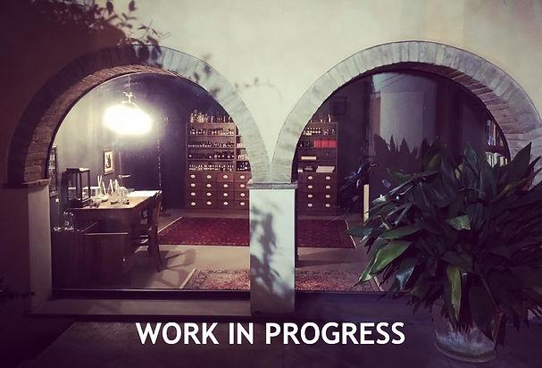 work in preogress.jpg