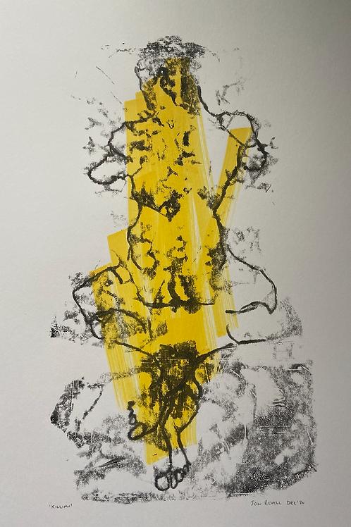 Killian (Yellow) December 2020