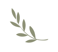 grey olive branch.png