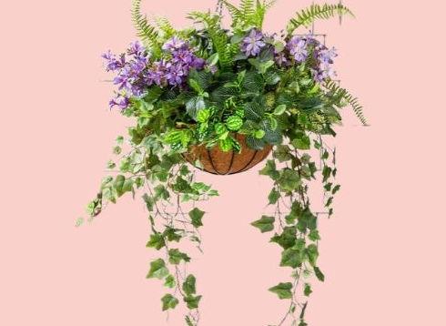 summer hanging basket .jpg