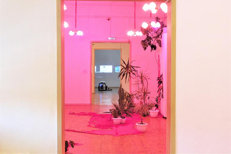 My pink room. 2018 installation / Моя розовая комната. 2018 инсталляция