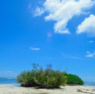 Nearby Island.jpg
