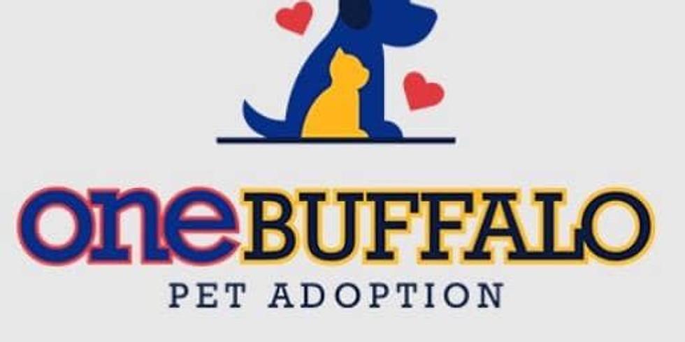 One Buffalo Pet Adoption Event