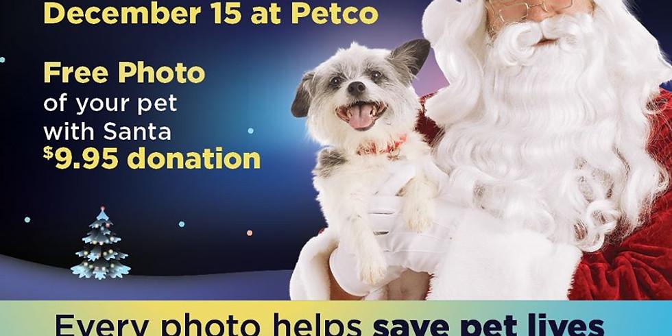 PETCO Adoption Event & Photos with Santa