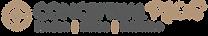 Conceptual Plus logo 2020-05.png
