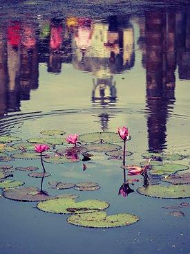 06a_Pond, Sukhothai, THA.jpg