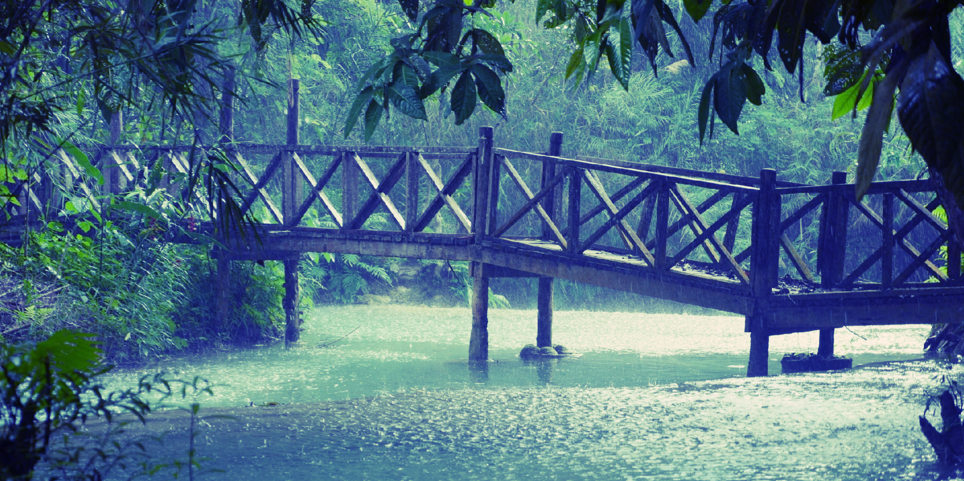 64. Tropenregen (Laos)