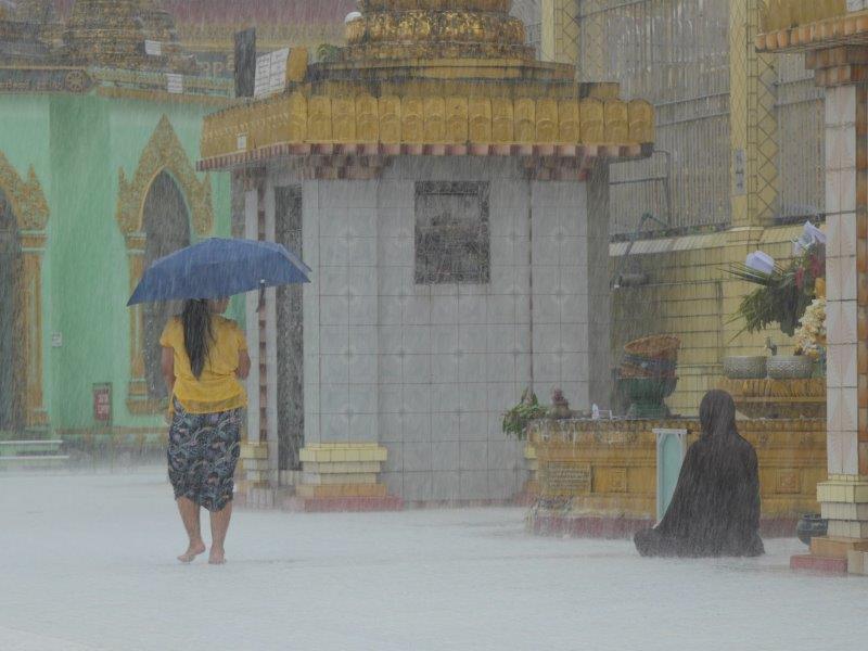 59. Mönch im Regen #3 (Myanmar)