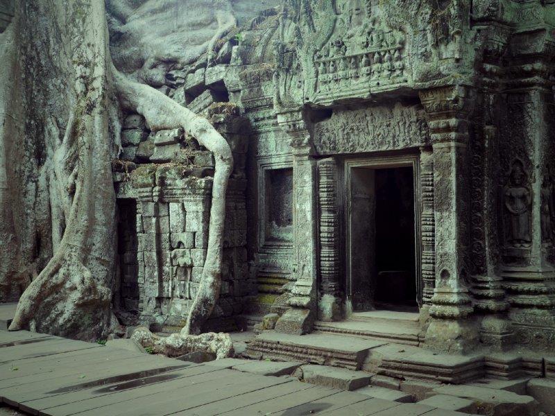 50. Tempel Ta Prohm (Kambodscha)