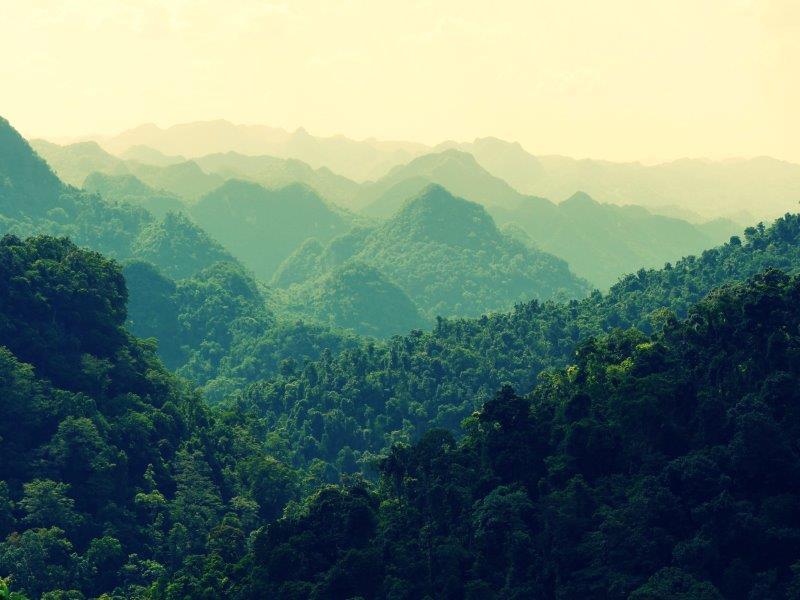 46. Bergketten (Vietnam)