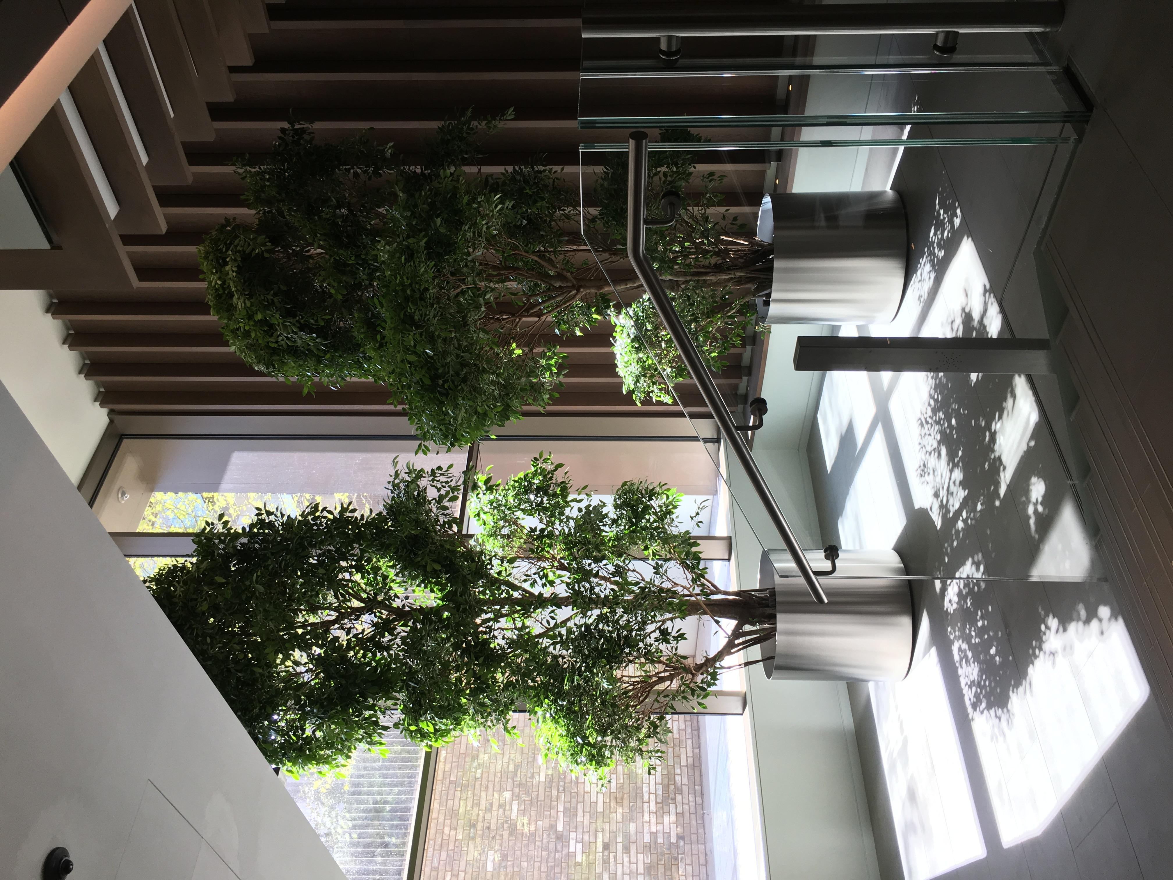 Interior lobby entrance