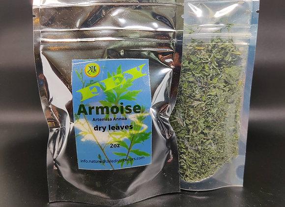 Armoise. Artemisa Annua leaves