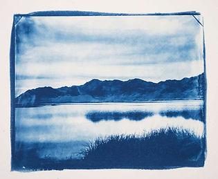 paysage_Cyanotype_©Luminaria.jpg