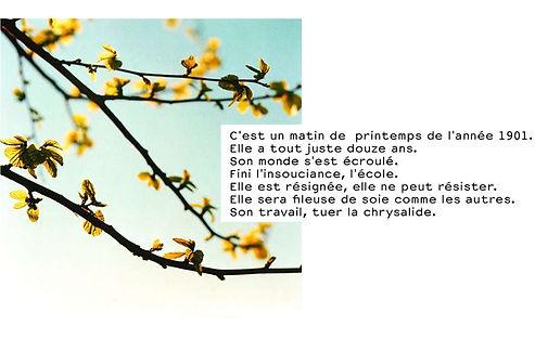 Aurore Le Maître 2.jpg