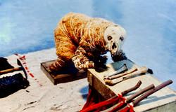 Bear Drag (detail)