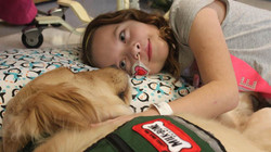 therapy-dogs-for-children