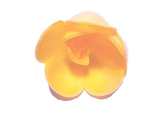 Oranžas lielās rozes