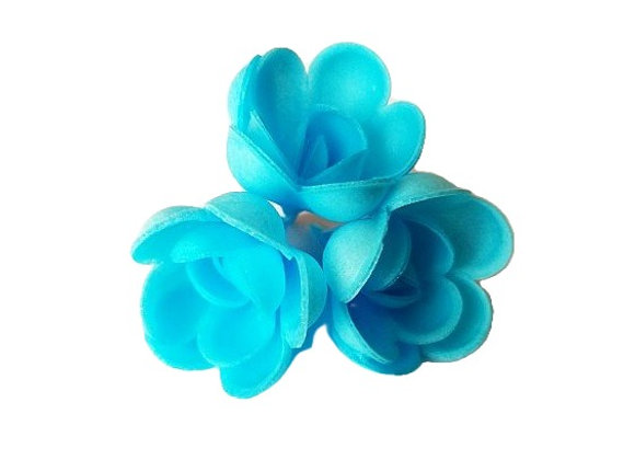 Zilas rozītes