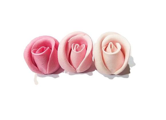 Mazās trīs toņu rozās rozes