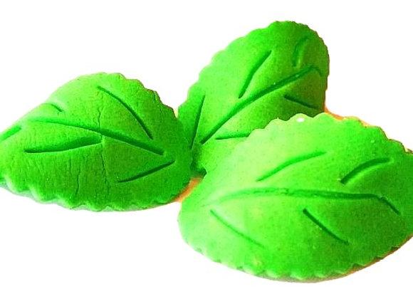 Lielas zaļas lapiņas