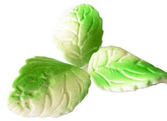 Lielas zaļi-baltas lapiņas