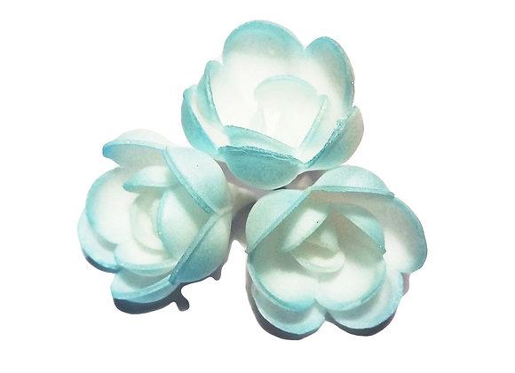 Tonētas zilas rozītes