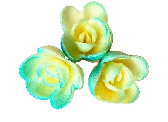 Tonētas zildzeltenas rozītes