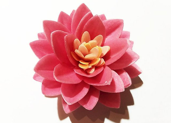 Tumši rozā lotusa zieds