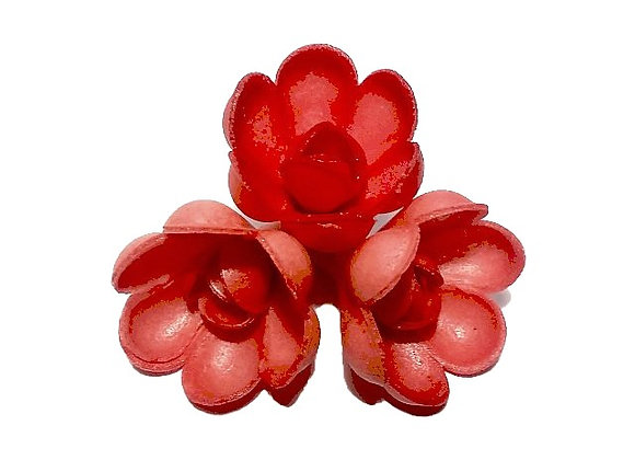 Sarkanas rozītes