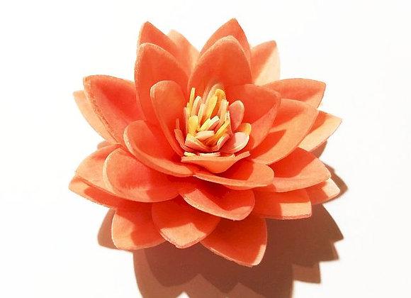Oranžs lotusa zieds