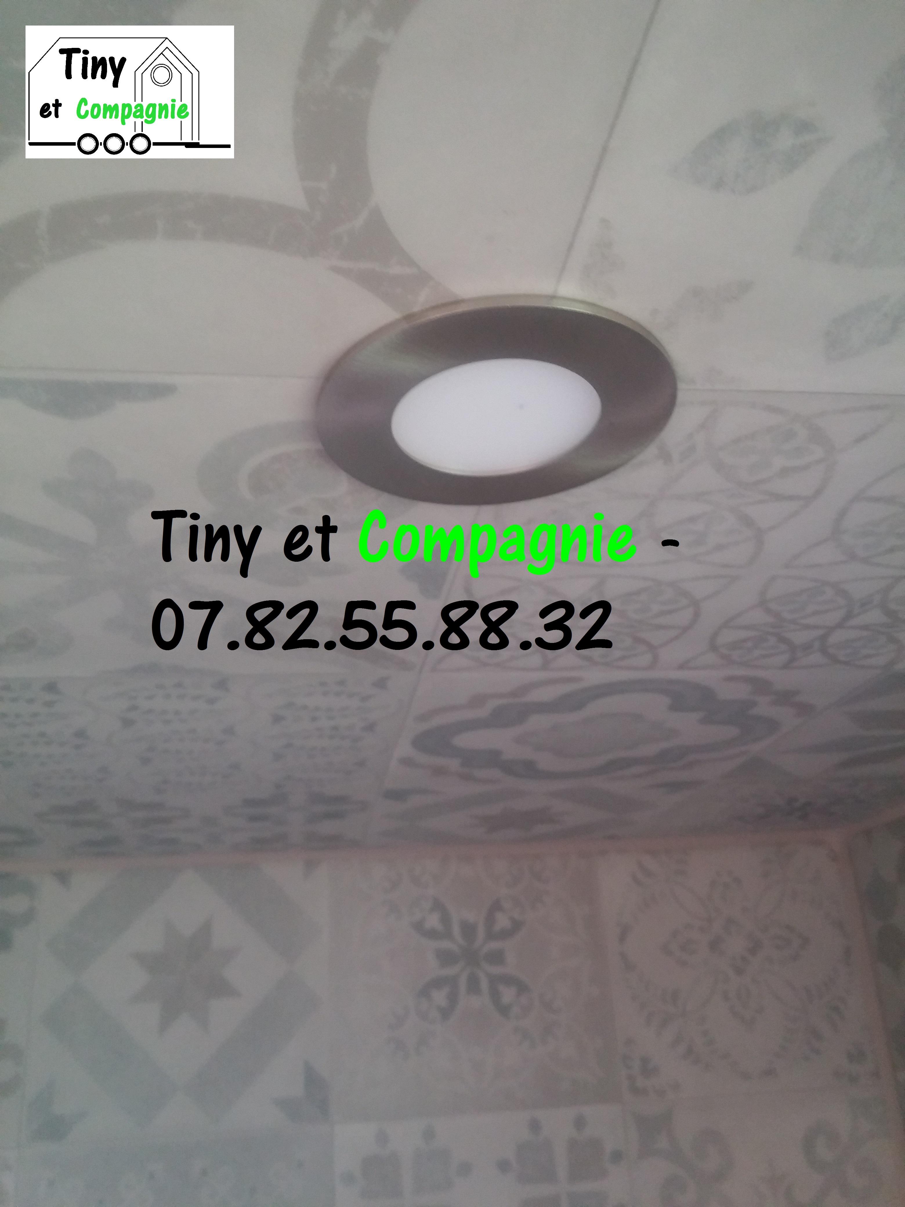 Tiny et Compagnie - Colibri 2019 (Spot D