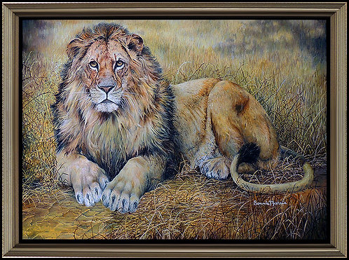 """The Great Lion"" by Bonnie Marris"