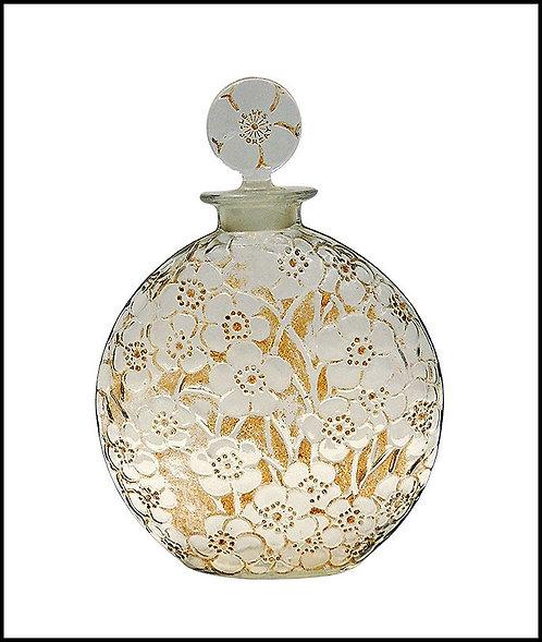 """""""Le Lys Perfume Bottle"""" by Rene Lalique"""