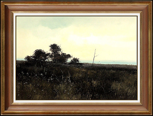 """Original Sunset - Tank Hollow"" by Michael Coleman"