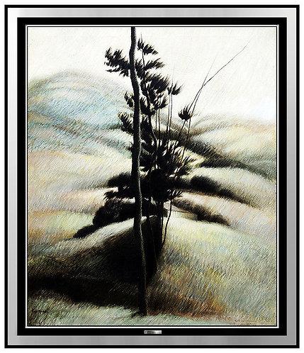"""Original Tree Near Berkshire Foothills"" by Robert Kipniss"