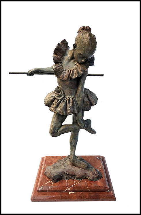 """The Rose"" by Richard MacDonald"